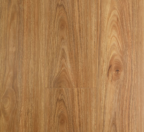 Oakleaf Laminate Flooring – Spotted Gum