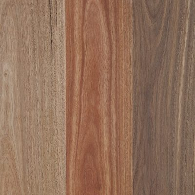 spotted_gum-matt-swatch-461x691