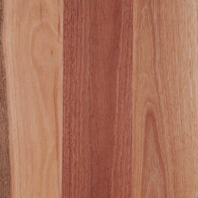 sydney_bluegum-matt-swatch-461x691
